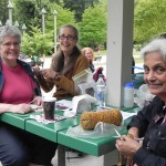 West Coast Knitters Guild - Knit in the Park Aug 2013