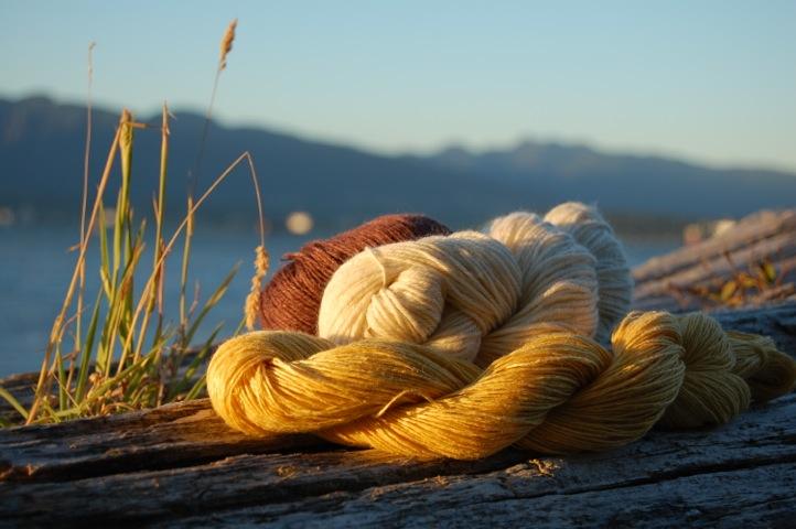 Yarn on a log